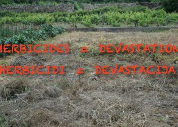 Herbicidi na bazi glifosata