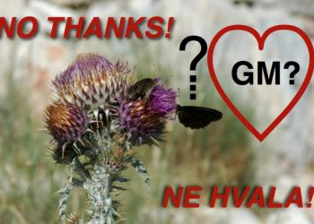GM, Pesticides and Hvar's Future Health