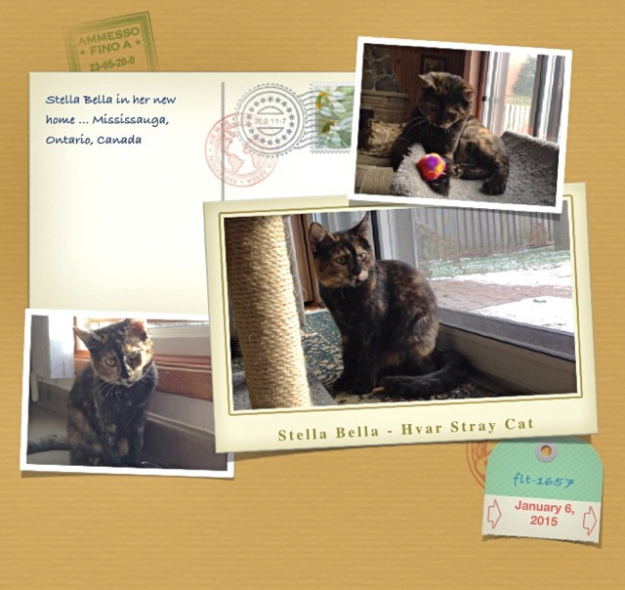 Stella's postcard from Canada