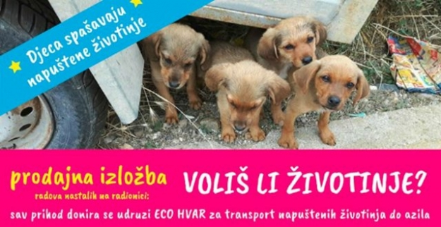 Hvar's children excel, Eco Hvar benefits!